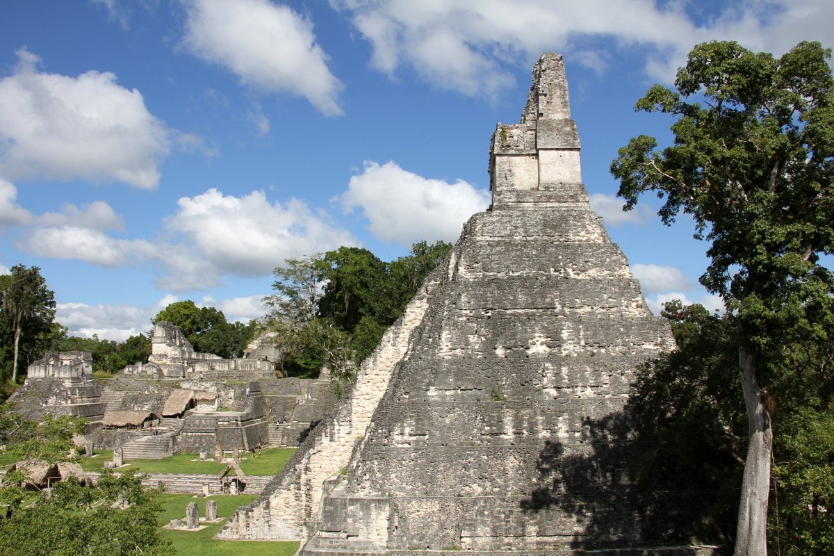 Main Plaza In Tikal